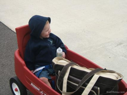 Ace Riding In His Wagon On His Way Into The Columbus Zoo