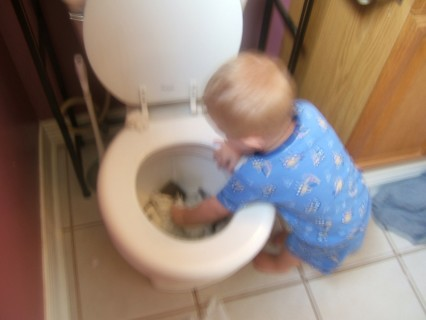 Ace Playing In The Toilet